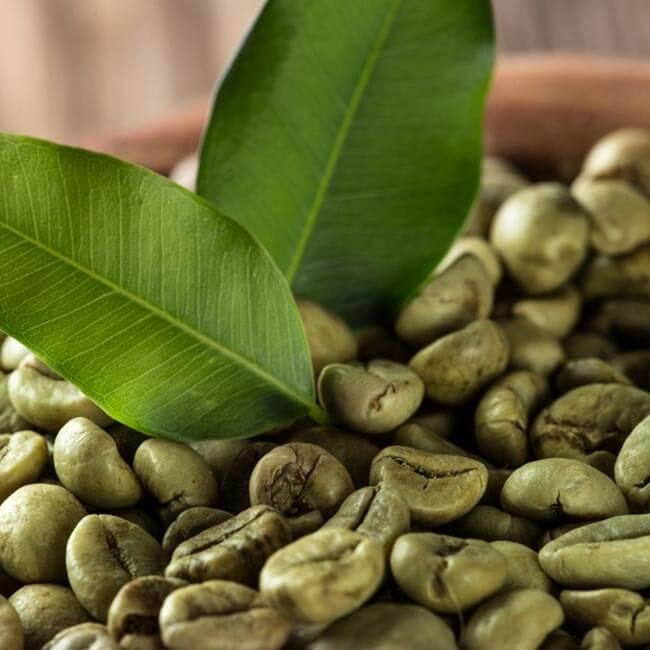 Sådan brygger du grøn kaffe derhjemme