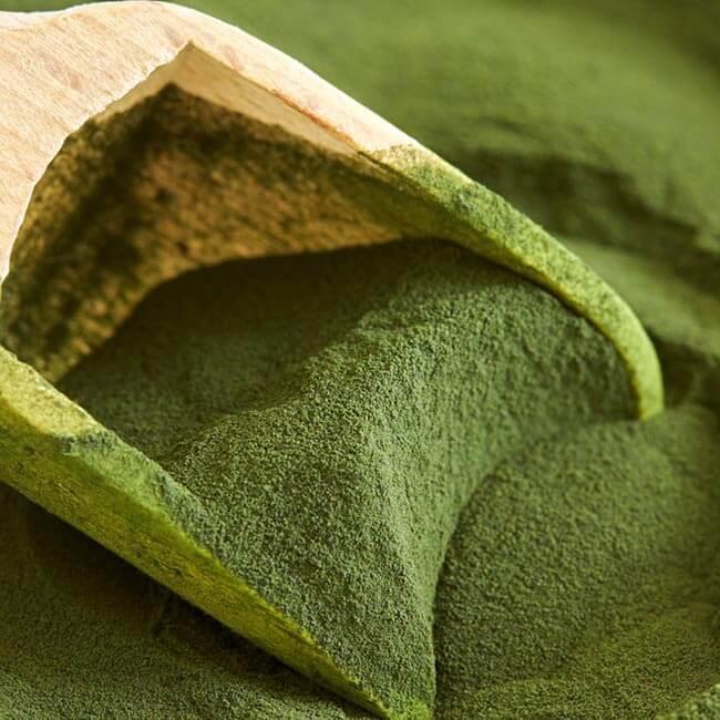 Sundhedsmæssige fordele ved Chlorella
