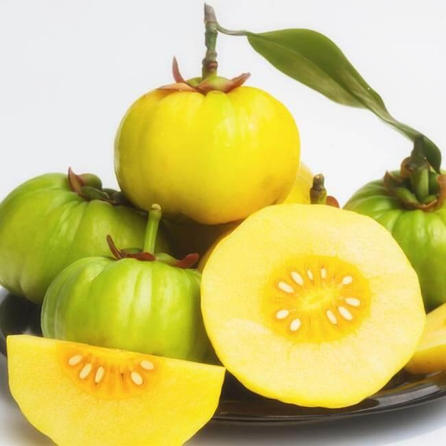 Er Garcinia Cambogia en slankepille?