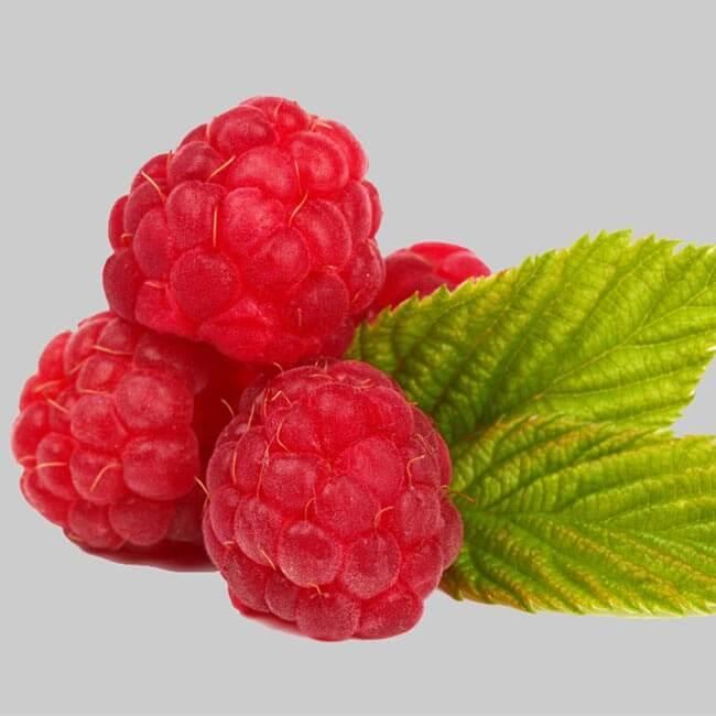 Raspberry ketone erfaringer?