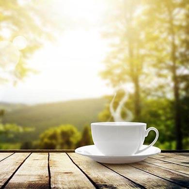 Fordele ved at tage Grøn Te Ekstrakt