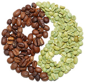 Hvad er kaffe
