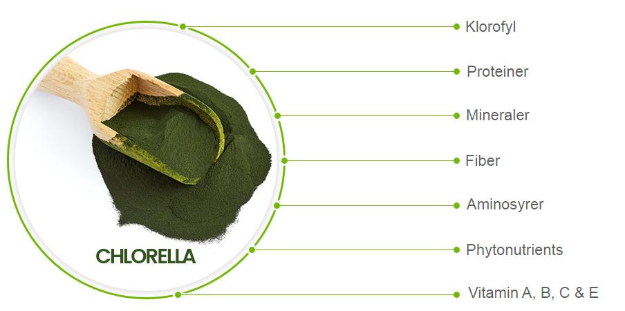 Chlorella pulver fordele