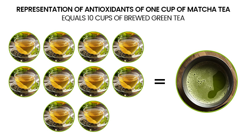 Representation of Antioxidants of one cup of matcha tea equals 10 cups of brewed green tea