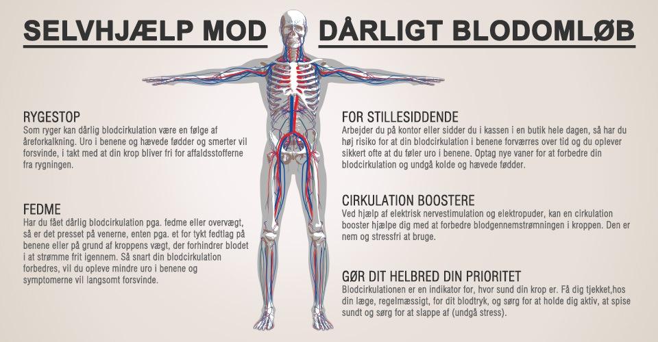 wwdk-blodcirkulation-infograph